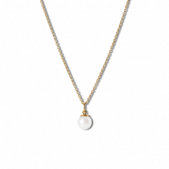 Combination of an Anchor Chain and Small Pearl Pendant, gold plated sterling silver